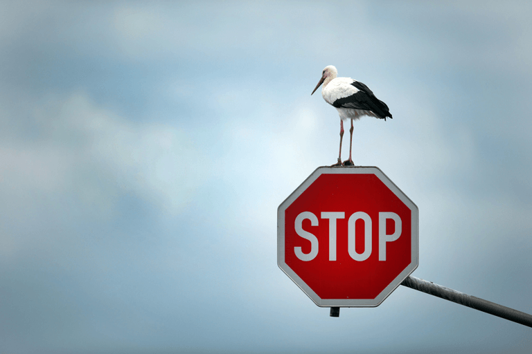 Top 10 things that Entrepreneur need to stop now