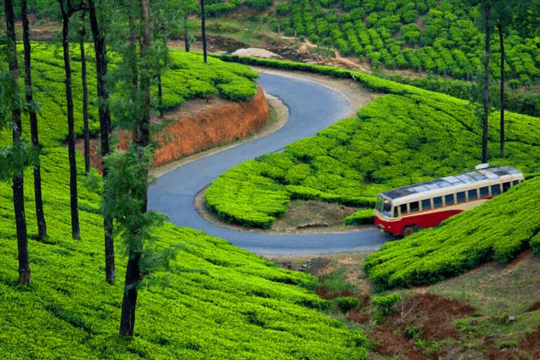 Top 10 Romantic Destinations in India